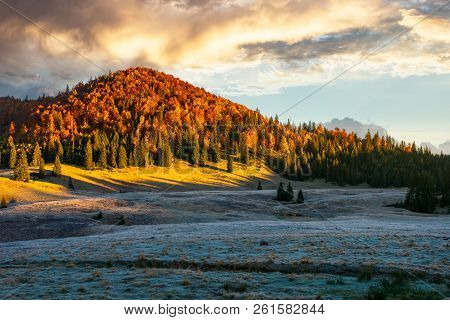 Gorgeous Sunrise In Mountains. Forest In Fall Color. Distant Mountain Lit By Rising Sun