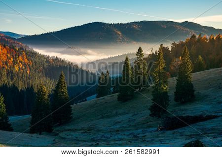 Gorgeous Autumn Landscape In Mountains. Grassy Meadow In Shade. Forest In Fall Color. Fog In The Dis