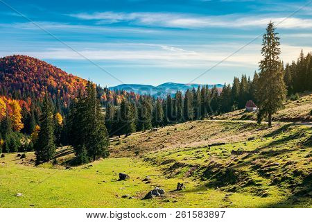 Wonderful Landscape In Mountains. Distant Mountain In Fall Colors On A Sunny Autumn Morning. Country