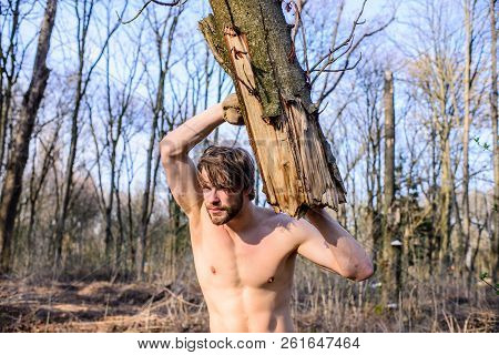 Masculinity concept. Man brutal strong attractive guy collecting wood in forest. Lumberjack or woodman sexy naked muscular torso gathering wood. Man brutal sexy lumberjack carry big log in forest poster