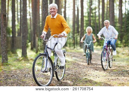 Cheerful excited senior friends in casual clothing enjoying active life cycling on bikes together in forest, they racing each other