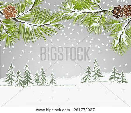 Winter Landscape Pine Branches With Snow And Pine Cones Christmas Theme And New Year Natural Backgro