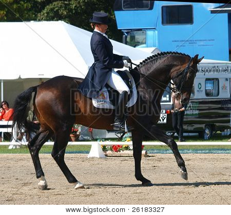 HASTINGS, NEW ZEALAND - MARCH 22: An unidentified advanced dressage rider competes at the Kelt Capital Horse of the Year Event March 22, 2009 held in Hastings, New Zealand.