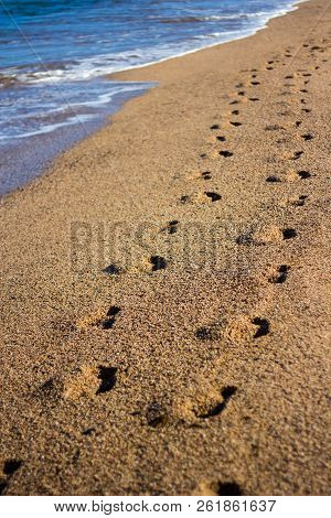 Couple Of Footprints On The Beach With Golden Sand