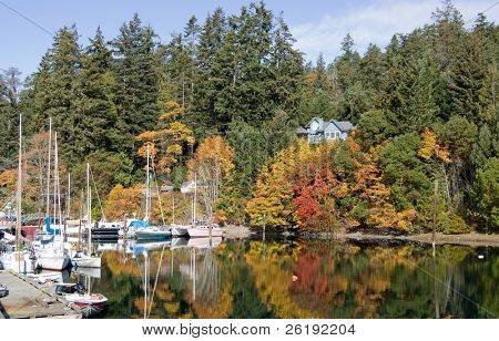 Bright autumn colors in island harbor; Saltspring Island, Canada