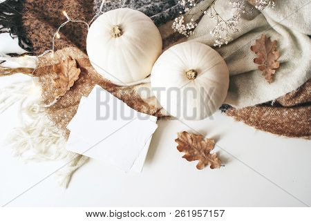 Autumn Cozy Composition. Blank Card Mockup Scene. White Pumpkins, Dry Oak Leaves, Christmas Lights A