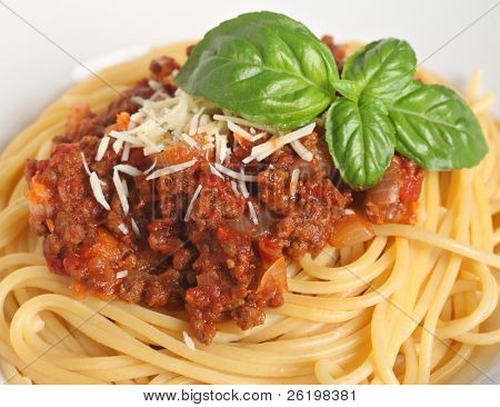 Close-up view of a plate of spaghetti bolognese, garnished with a sprig of Italian, large-leafed basil