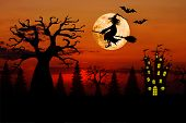 Halloween bloody red sunset horizontal background with full moon, silhouettes of terrible dead trees, castle, bats, smiling wicked witch flying on broomstick on dark red spooky night cloudy sky. Horror concept. poster