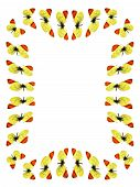 Frame Moroccos orange butterflies in the white background poster