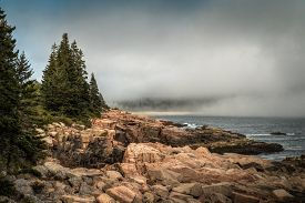 Foggy Maine Coastline - Acadia National Park, Maine, Usa