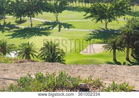 Gran Canaria Meloneras Golf Play Green Grass And Palm Trees In The Canary Islands.