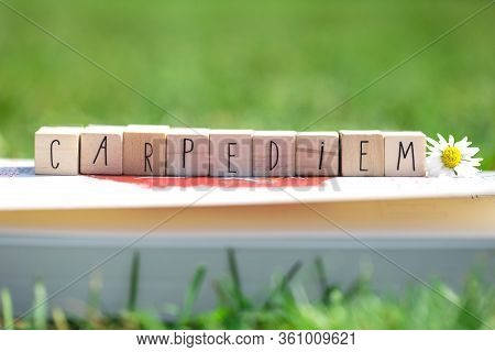 Wooden Cubes With The Words Carpe Diem, Meaning Seize The Day, In Green Bright Grass And A White Dai