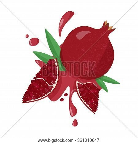 Hand Drawn Pomegranate On White Background. Vector Illustration Of Fruit Pomegranate With Juicy Spla