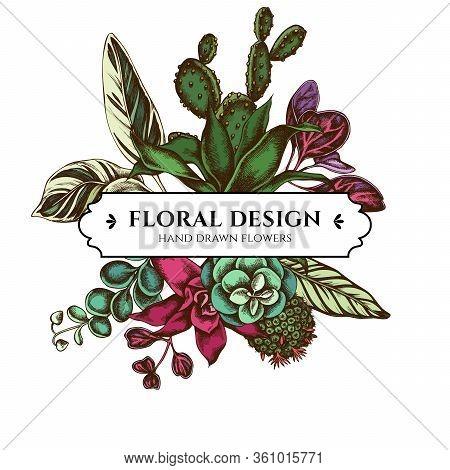 Floral Bouquet Design With Colored Ficus, Iresine, Kalanchoe, Calathea, Guzmania, Cactus Stock Illus