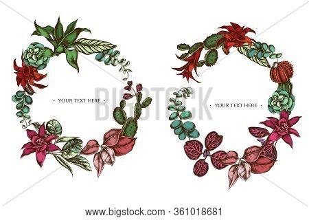 Floral Wreath Of Colored Ficus, Iresine, Kalanchoe, Calathea, Guzmania, Cactus Stock Illustration