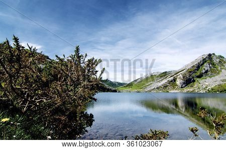 Lago De Enol In Valley Between Mountain Peaks Of Cantabrian Range With Reflection Outdoors. Covadong