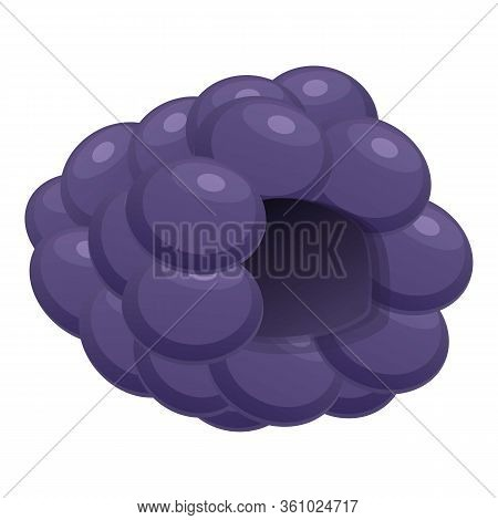 Natural Blackberry Icon. Cartoon Of Natural Blackberry Vector Icon For Web Design Isolated On White