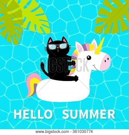 Hello Summer. Swimming Pool Water. Black Cat Floating On White Unicorn Pool Float Water Circle. Top