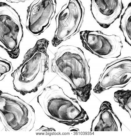Raw Shellfish Background. Sketch Of Oyster Shells On White. Seamless Pattern Of Edible Mollusc. Back