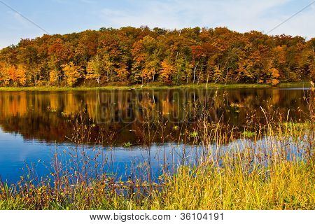 Autumn Scenery With Trees Reflected In Lake
