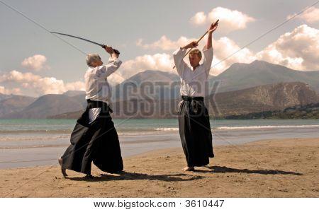Aikido In Japon