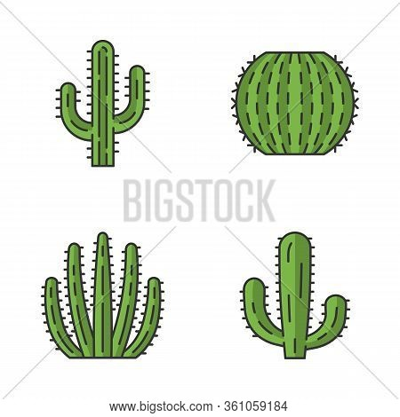 Wild Cactus Color Icons Set. Succulents. Cacti Collection. Saguaro, Organ Pipe, Mexican Giant And Ba