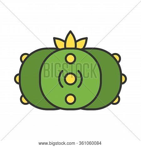 Peyote Cactus Color Icon. Lophophora. Mescal Button. Hallucinogenic Cactus. Mexico Native Flora. Iso