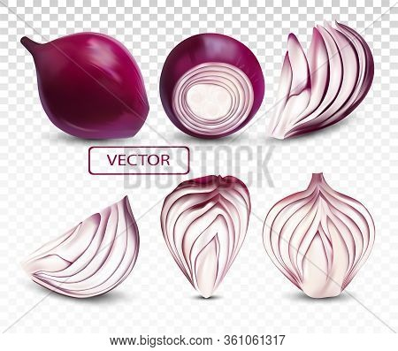 Collection Fresh Red Onion Close Up.sliced, Half, Piece Onion On Transparent Background. 3d Realisti