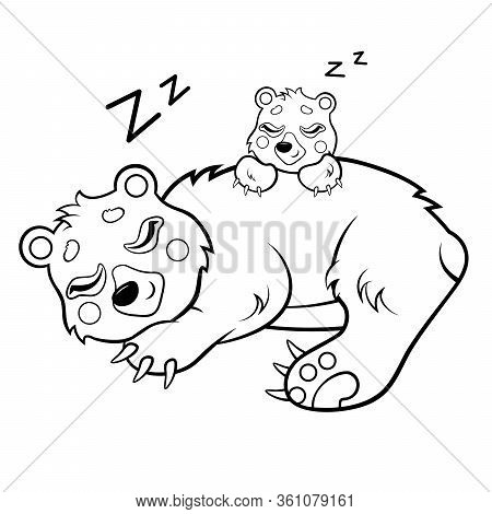 Cute Cartoon Sleeping Bears Vector Coloring Page. Bear Mom With Her Cub. Coloring Book Of Forest Ani