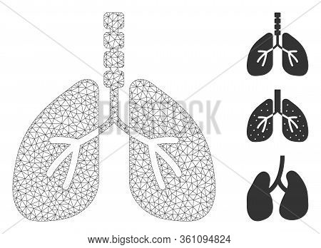 Mesh Breathe System Polygonal 2d Vector Illustration. Carcass Model Is Based On Breathe System Flat