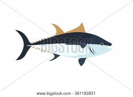 Atlantic Bluefin Tuna Fish Simple Vector Cartoon Color Illustration