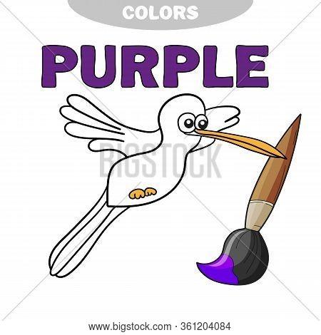 Educational Game Coloring Book Colibri Bird - Vector Illustration. Learn The Colors - Purple. Colori