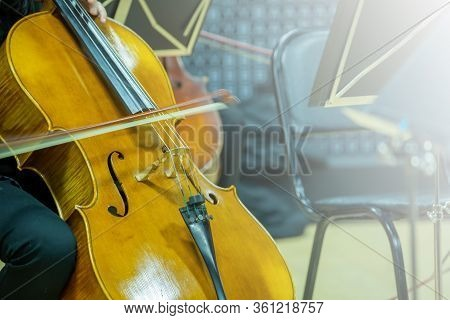 Cello Musicians Are Rehearsing For A Performance.