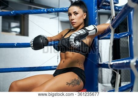 Side View Of Serious Professional Female Kickboxer Wearing Trendy Sports Outfit And Boxing Gloves On