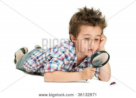 Attentive Little Boy With Weird Hair Researching The Bug Using Magnifier