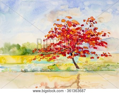Watercolor Landscape Painting Colorful Of Natural Beauty Red Flowers Tree And Mountain Forest With S