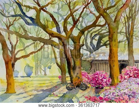 Watercolor Landscape Painting Colorful Of Garden Natural Beauty Tree And Pink Flower With Forest Bac