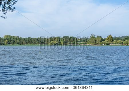 View Of Water Lake, Aquatic Vegetation And Trees On Other Side At The Banks, In Pateira De Fermentel