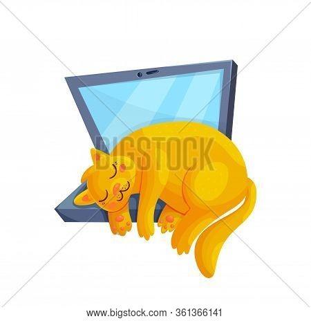 Cute Red Sleeping Cat On Laptop. Cartoon Kitty Character Asleep. Freelancer Life Concept Vector Illu