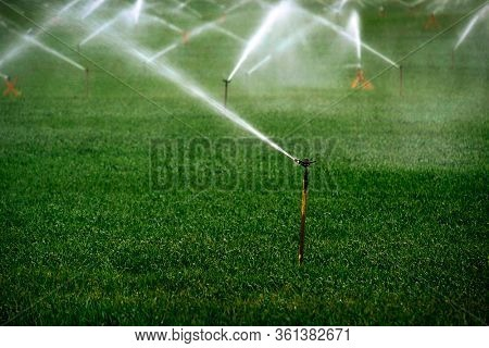 Sprinker irrigation system spraying water on field agricultural
