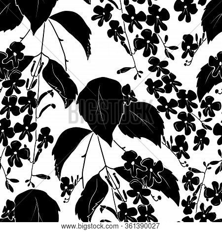 Seamless Pattern With Black Silhouette Of Small Flowers With Leaves Isolated On White Background.