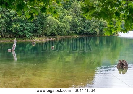 Tranquil Forest Lake Landscape With Clear Turquoise Green Water. Pristine Forest Nature Background