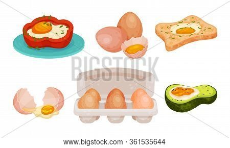 Raw And Cooked Egg Rested In Bell Pepper And Avocado Vector Set