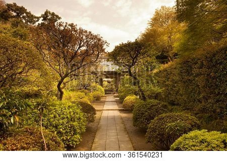 Garden At Kenchoji Temple, Kamakura, Kanagawa Prefecture, Greater Tokyo Area, Japan