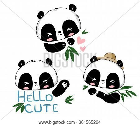 Set Of Sketch Pandas And Bamboo Isolated On White Background. Different Poses Bear Panda Vector Illu