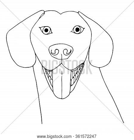 Dog. Pop Art Monochrome Pet Hand Drawn Art Design Stock Vector Illustration For Web, For Print, For