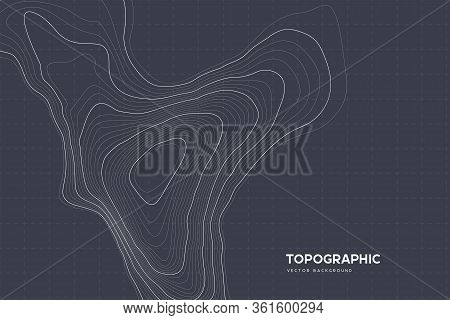 Topographic Map Background With Copy Space. Abstract Map Lines And Contours. Geographic Grid, Vector