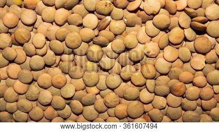 Brown Lentils.background Of Brown Lentils.the Texture Of The Lentils.