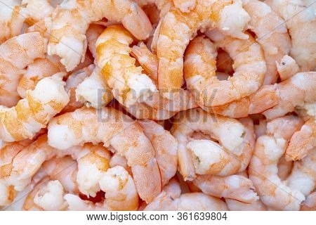 Peeled Fresh Shrimp Background. Big Shrimps Close Up. Raw Fresh Shrimp Background. Pile Of Fresh Pee