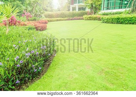 The Sunshine In The Evening Shines Through The Trees Down To The Lawn Of The Front Of The House Beau